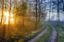 Road to the sun by Mikael Svensson