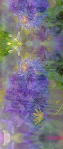 Träume vom Frühling von © Ivonne Wentzler