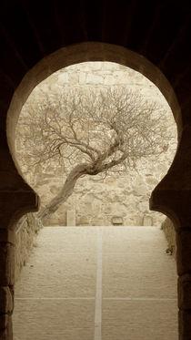 door of a castle by Ana Mazi