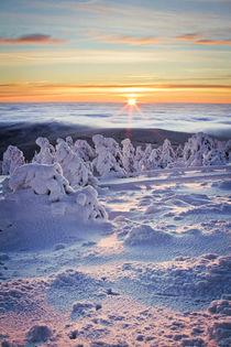 Winterlandschaft von Henrik Herr