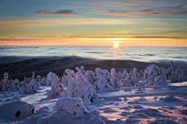 Winterlandschaft 2 by Henrik Herr