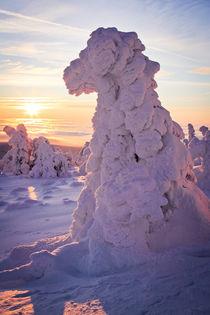 Schneegestalt by Henrik Herr