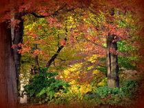 Bunter Herbst von Ulrike Ilse Brück