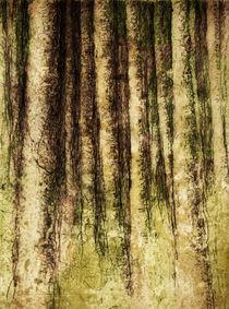 Beim Eingang des Waldes. by Bernhard Kosten
