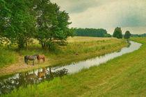 Landschaft mit Pferden by pahit