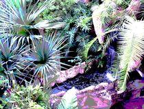 Wasser von Tina M. Emig