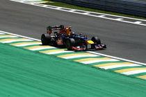 Vettel von Barbara Roma