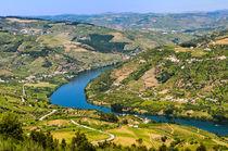 Banks of the Douro river, Portugal von Michael Abid