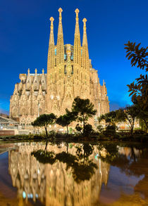 Sagrada Familia in Barcelona von Michael Abid