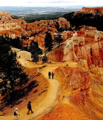 Tourists trail in Bryce Canyon von Maks Erlikh