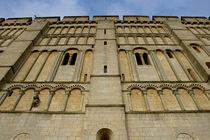 Norwich castle museum by Jordan Browning