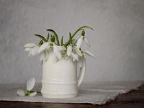 Still life with snowdrops by Diana Kraleva