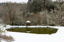 Snow at the Pond von Michael Waters