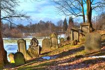 Jewish cemetery by Gina Koch