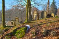 Jüdischer Friedhof by Gina Koch