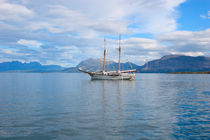 Tall ship entering harbour by Intensivelight Panorama-Edition