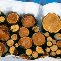 Stacked timber von Intensivelight Panorama-Edition
