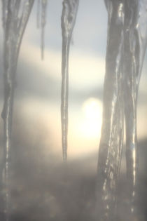 Icicles at sunset by Intensivelight Panorama-Edition