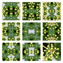 3x3 Knospe von Ralph Patzel
