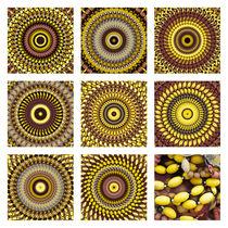 Fischernetz-collage