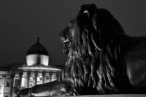 Trafalgar Square at Night by David Pringle