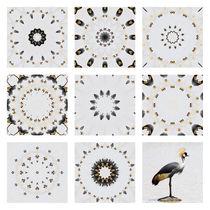3x3 Kronenkranich von Ralph Patzel