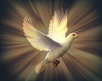 Dove of Peace von Heather Goodwin
