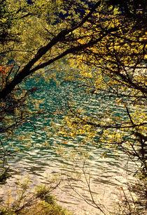 Fenster zum See by Ulrike Ilse Brück