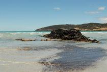 Kangaroo-island-122