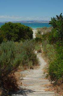 Beach Walk, Kangaroo Island von Philip Shone
