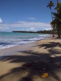 Caribbean Beach. toys by Tricia Rabanal