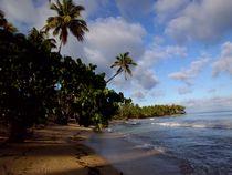 The paradise von Tricia Rabanal