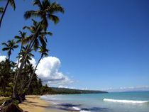 Samana The Paradise, Rep Dominican by Tricia Rabanal