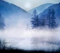 blue mystic by Viviana González