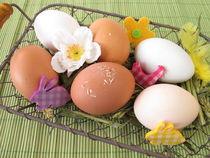 Natürlich bunte Eier im Osterkorb von Heike Rau