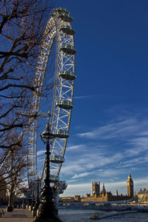 The London Eye by David Pringle