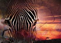 African Dreams VII von Ingo  Gerlach
