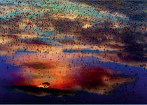 African Dreams VI by Ingo  Gerlach