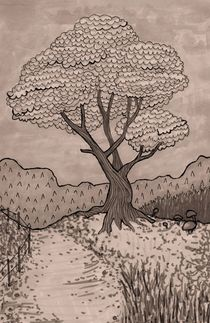 Blossom Tree von Sophie Corrigan