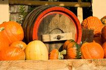 Herbstimpressionen von Gina Koch
