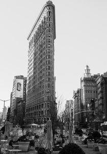 Flat Iron Building by Milena Piel