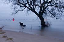 2012-03-11-300dpi-baum-und-baenke-im-wasser-sea-001