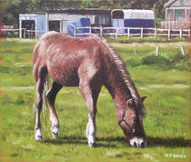 Painting-brown-horse-by-stables