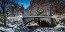 Bridge In Snow, Central Park by Chris Lord