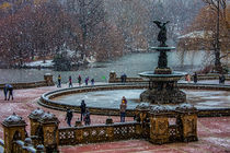Snow Flurries In Central Park by Chris Lord