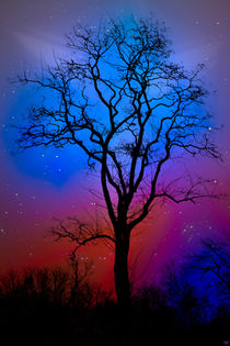 Fantasy Tree von Chris Lord