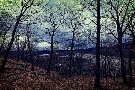 Viewfromthehill