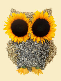 Hoot! Day Owl! von Marco Angeles