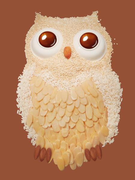 Owl1-print