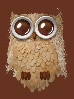 Owl-print